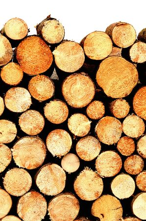 Pile of wooden logs ready for winter texture isolated on white background. Vertical photo. Imagens