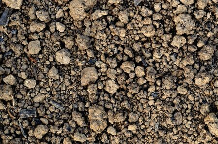 Black nourishing ground prepared for planting. Spring field preparation for sowing texture background. Imagens