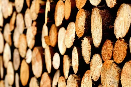 Abstract of a pile of natural wooden logs background. Side view at an angle.