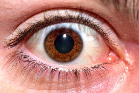 Macro detail of human female eye with brown pupil