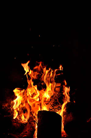 Natural fire flames in nature while camping. Vertical photo. 免版税图像