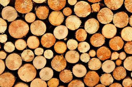 Firewood stacked and prepared for winter - pile of wood logs background. 免版税图像