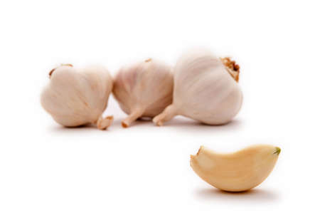 pungent: Allium sp. Garlic is widely used for its pungent flavor. Stock Photo