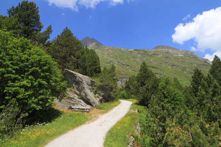 Engadina (Swiss) photo
