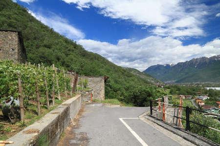 Valtellina Italy