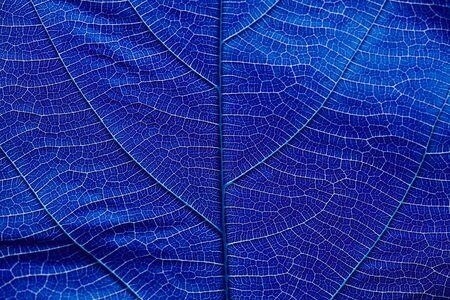 dark blue: Close up on dark blue texture background Stock Photo