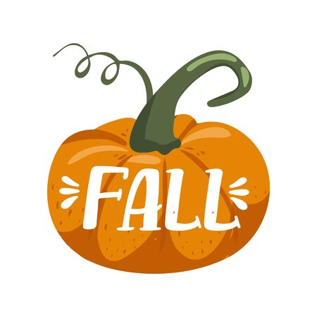 Autumn illustration. Pumpkin. Stylish typography slogan design Fall sign. Greeting card. Vector illustration on white background.