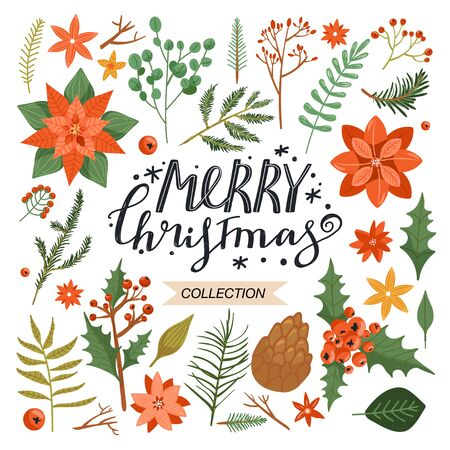 Collection of floral Christmas elements. Set with flower poinsettia, tree branch, leaves, holly leaves, pinecone, berry, eucalyptus etc. Design for textile, postcard, invitation, poster, wrapping paper etc. Vector illustration.