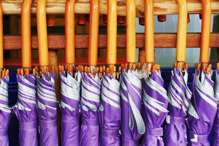 umbella: violet umbella