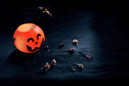 Halloween pumpkin head with dry flowers on black clothes in natural shadow and light. Halloween holiday concept.