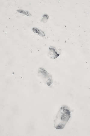 Footsteps on the snow.