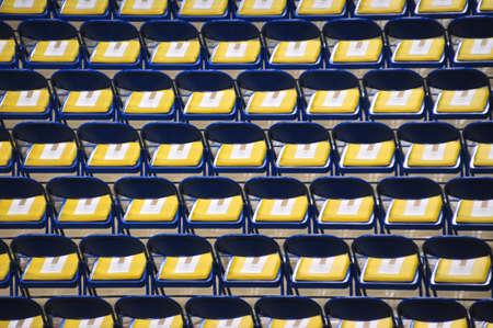 sameness: Rows of chairs