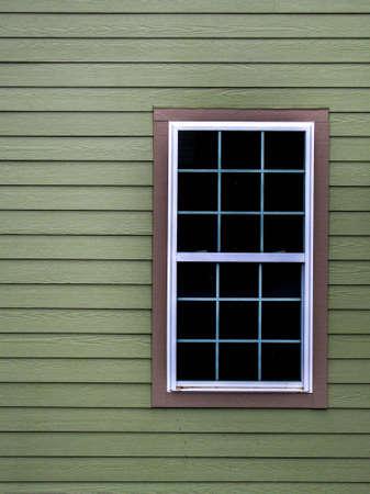 bougainvillea: window and green wall
