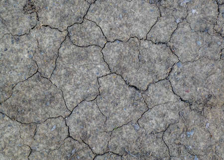 Textured background - dry cracked brown earth  Stock Photo