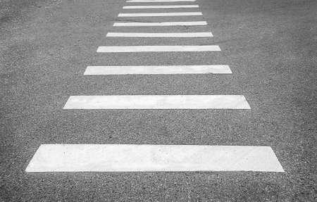 white on asphalt crosswalks Stock Photo - 19603879