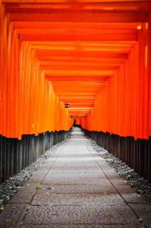 messengers of god: Fushimi Inari temple
