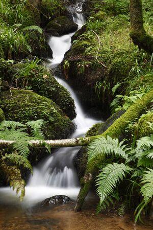 A long exposure image of a small stream near Birnam, Perthshire, Scotland. Stock Photo