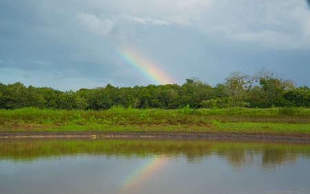 Frio river. Cano Negro, Costa Rica Reklamní fotografie