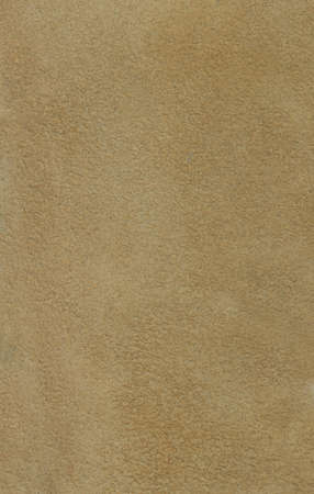 Genuine leather background (inner side)