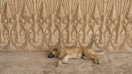 Stone engraving with laying dog. Iraq