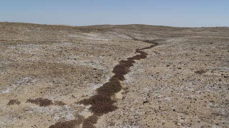 Saline dried soil in Iraqi desert Фото со стока
