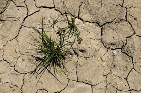 dry ground Stock Photo - 930683