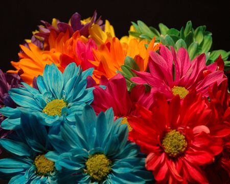 Flowers Stock fotó