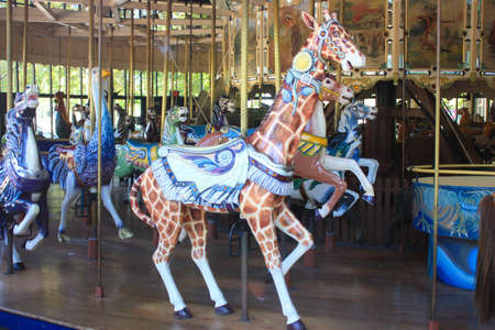 carousel: giraffe carousel  Stock Photo