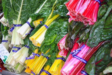 Swiss chard in many colors displayed for sale photo