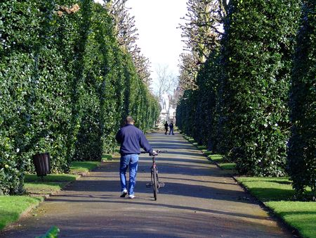 Man walks with bike in park. Stock Photo
