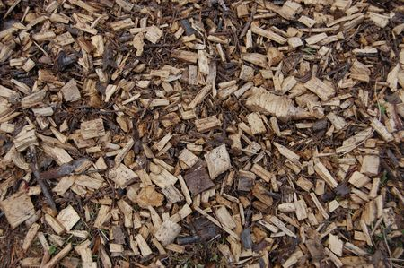 a floor texture  pattern of some wood chips and bark                                Stock Photo