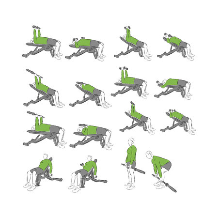 systematic: Set of systematic bodybuilding exercises Illustration