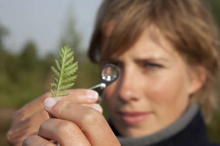 ecologist: Ecologist determined a plant Stock Photo