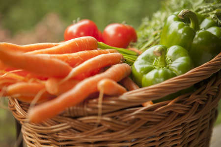 Selective focus of basket full of vegetables Standard-Bild