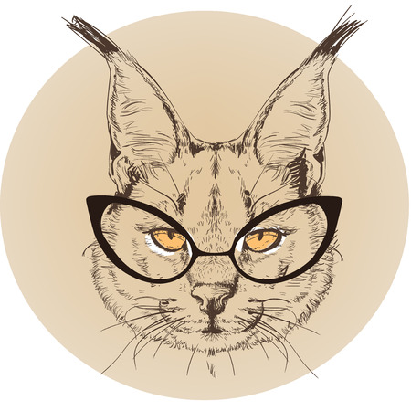 lynx: hipster portrait of wild bobcat with glasses Illustration