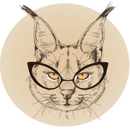 bobcat: hipster portrait of wild bobcat with glasses Illustration