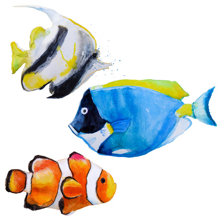 blue fish: set with hand drawn watercolor tropical fish