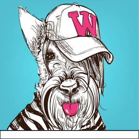 Cute portrait of a Scottish Terrier wearing a cap. Vector illustration.