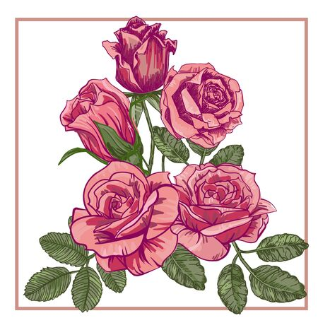 abstract rose: five red roses. vector illustration. Illustration