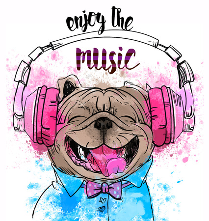 strip a dog: Cute portrait of a dog with headphones. Stock Photo