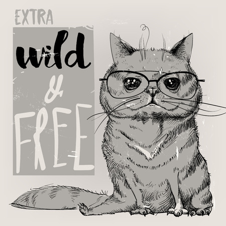 Leuk portret van een kat. Vector illustratie. Stockfoto - 55900856