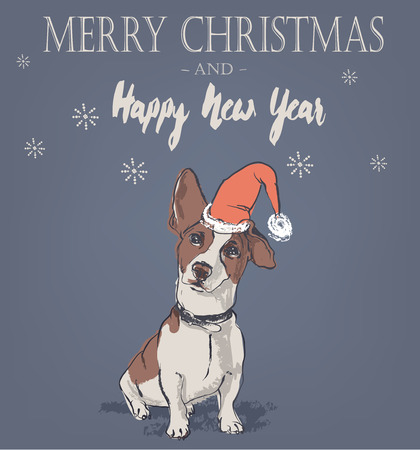jack russell: cute Christmas card with Jack Russell Terrier dog