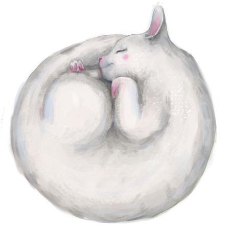 Weiß Schlaf nett Kreis Katze Standard-Bild - 68349530