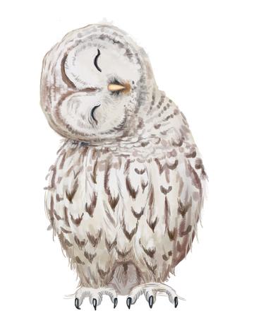 cute white cartoon owl raster portrait on white background Foto de archivo