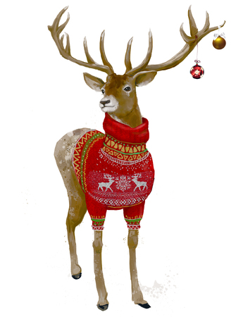 portrait of cute christmas deer with red sweater