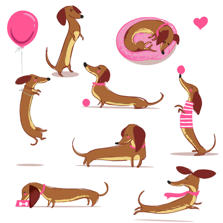 set with cute cartoon dachshund
