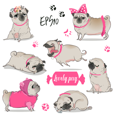 set met schattige cartoon pug