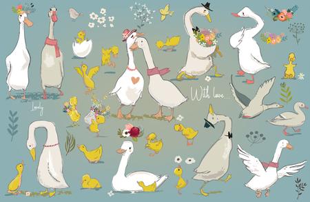 set with cute farm birds Stock Illustratie