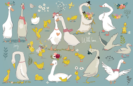 set with cute farm birds 일러스트
