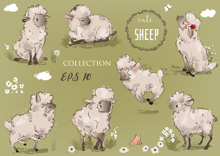 cute sheeps collection 版權商用圖片